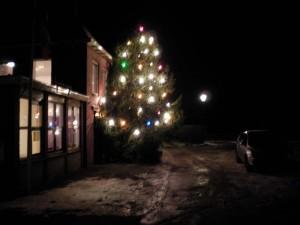 kerstboom Garsthuizen
