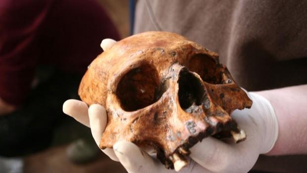 Vondsten archeologisch onderzoek kerk Garsthuizen