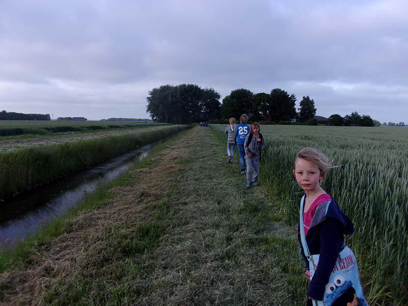 wandelvierdaagse Garsthuizen - Startenhuizen